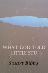 What God Told Little Stu