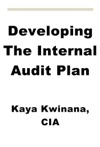 Developing The Internal Audit Plan