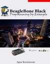 BeagleBone Black Programming By Example