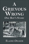 A Grievous Wrong One Boys Story