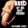 Bred By His Best Friend BBW MMF Bisexual Threesome Erotica