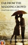 Far From The Madding Crowd Chapters XXVI - XXX EbookAudiobook