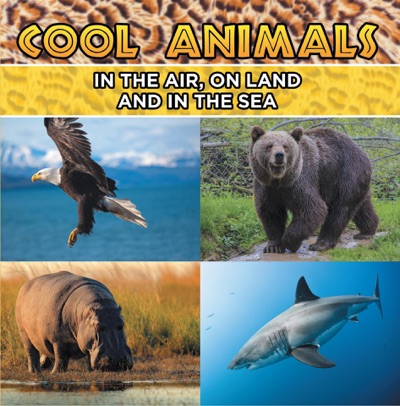 Cool Animals In The Air On Land and In The Sea