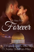 Charles Sheehan-Miles - A View from Forever artwork