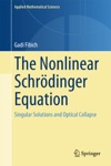 The Nonlinear Schrdinger Equation