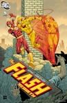 The Flash Rebirth 2009- 5