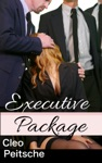 Executive Package Office Toy 6