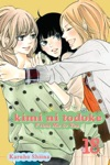 Kimi Ni Todoke From Me To You Vol 18