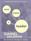 WHAT MAKES A LEADER WHY EMOTIONAL INTELLIGENCE MATTERS