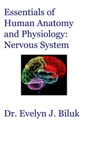 Essentials Of Human Anatomy And Physiology Nervous System