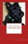 How To Train And Understand Your Scottish Terrier Puppy  Dog