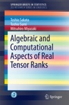 Algebraic And Computational Aspects Of Real Tensor Ranks