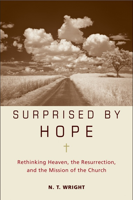 Surprised by Hope N T Wright Book