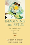 Imagining The Fetus The Unborn In Myth Religion And Culture