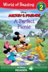 World Of Reading Mickey  Friends  A Perfect Picnic