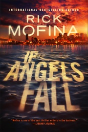 If Angels Fall book summary
