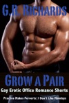 Grow A Pair Gay Erotic Office Romance Shorts