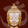 Wise Buddha 3