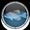 Reef Aquarium HD