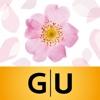 GU-Bach-Blüten