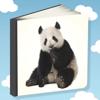 Álbum Ilustrado para Niños