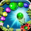 Ladybug Ball