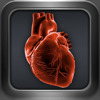 ECHO - Echocardiography Reference