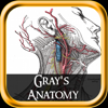 Gray Anatomy (+1000 Illustrations) for iPad