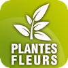 Des Fleurs et des Plantes