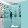 CEMEX Annual Report 2011