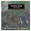 The Red Badge of Courage (by Stephen Crane) (UNABRIDGED AUDIOBOOK)