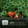Slide to unlock Pro