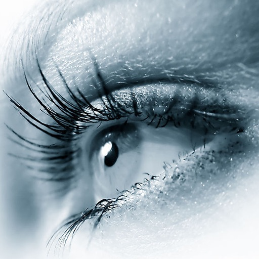 A Sharp Eye (Fast Reading Training) 利眼(快速阅读训练)