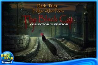 Edgar Allan Poe's The Black Cat: Dark Tales Collector's Edition-0