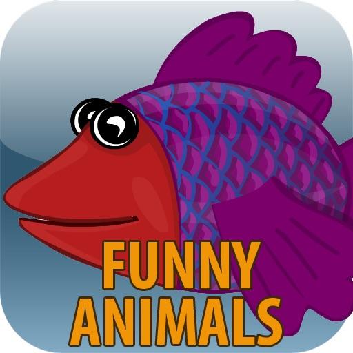 Talking Fish - Funny Animals