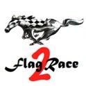 FlagRace2 icon