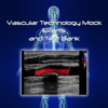 Vascular Technology Mock Exams and Test Bank