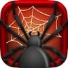 Spider Surprise