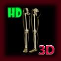 3D Human Leg Skeleton Pro icon