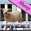 Sheep Piano Free
