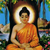 Buddhism News