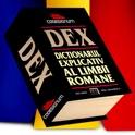roDEX pro