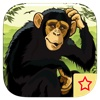 Flying Ninja Apes Attack - The Planet of War PREMIUM by The Other Games