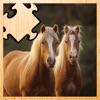 動畫Haflinger馬拼圖小馬 - 免費遊戲的樂趣為整個家庭。免費兒童遊戲的女孩和男孩