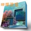 拼图系列之海底世界
