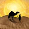Reiner Knizia's Through the Desert HD iPhone / iPad
