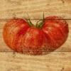Tomato Match from Fine Gardening