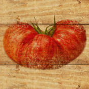 Tomato Match from Fine Gardening icon