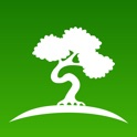 Bonsai Trees icon