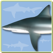 Sharks & Rays - Identification Guide for iPad